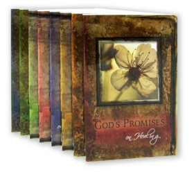God's Promises Series
